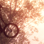 Descenders freeride